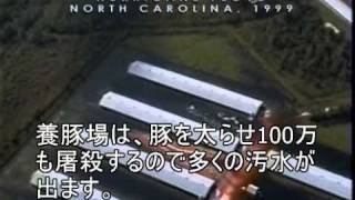 Earthlings Japanese Subtitle - YouTube