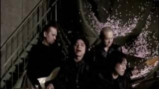 エレファントカシマシ / 桜の花、舞い上がる道を - YouTube