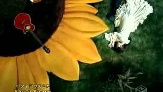 PV 沢尻エリカ タイヨウのうた - YouTube