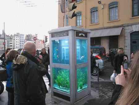 フランスのデザイナーによる電話ボックスを再利用してつくった水槽が物凄い 旧アクアカタリスト