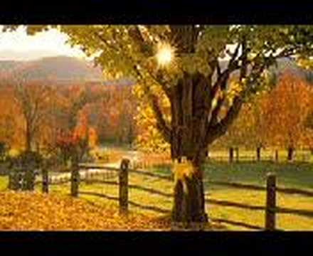 Tie a yellow ribbon round the old oak tree - YouTube