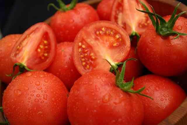 恋の始まりはトマト投げ!女性が意中の男性にトマトを投げつける婚活イベント開催