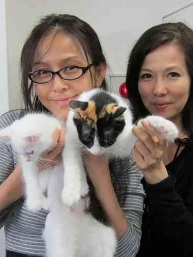 杉本彩、被災地の猫とのエピソードを披露…映画『犬と猫と人間と2 動物たちの大震災』トークショーで
