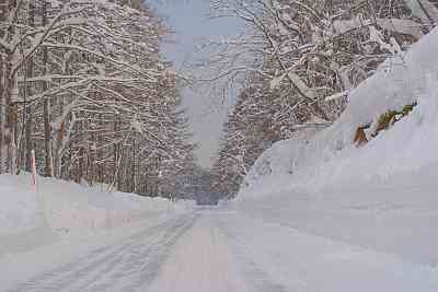 【閲覧注意】タイヤショップのCM「雪道コワイ」がヤバい