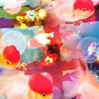 蜷川実花のカメラアプリcameranでみんなが撮った写真 - NAVER まとめ
