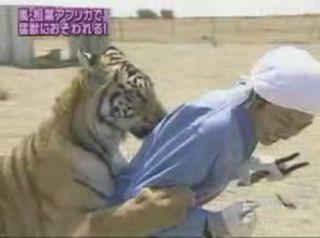 有名人と動物の2ショット画像を貼るトピ