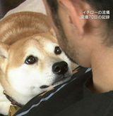 【画像】イチローの愛犬『一弓』がかわいすぎるンゴwwwwwwww:<イチロー>:僕自身なんJをまとめる喜びはあった