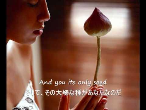 The Rose - Bette Midler (歌詞字幕)English & Japanese Lyrics - YouTube