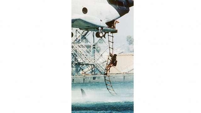 兵士がヘリの縄はしごを登っている真下をサメが通過…。見るだけで気温が下がりそうな写真(本物) - ライブドアニュース