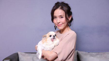 犬猫の「しあわせなお買い物」で笑うのは誰か (東洋経済オンライン)