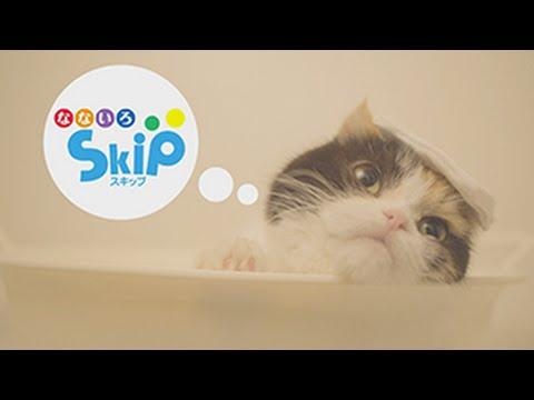 「なないろSkip」PRムービー「入りたくない猫」篇 - YouTube