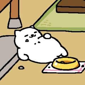 ダイエット〜大食いの方〜