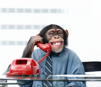 辛い時、連絡とりたいのは彼氏?友達?