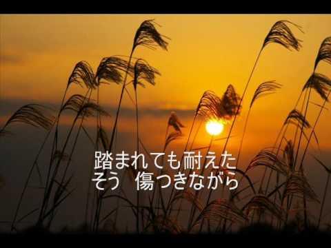 昭和枯れすすき  ちあきなおみ - YouTube
