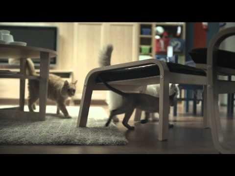 Happy Inside - IKEA cats advert - YouTube