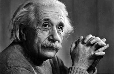 まるで「アインシュタイン」のように威厳がありすぎる猫が話題に