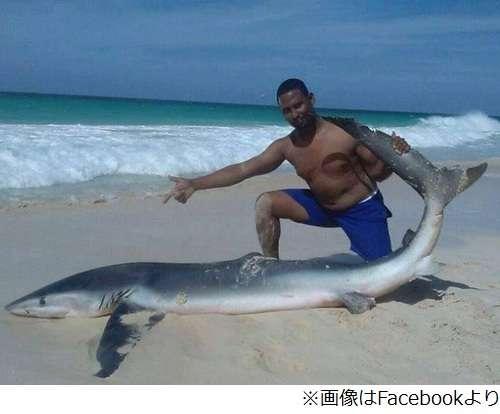 サメ引きずり上げ写真撮り炎上、ライフガードも参加で物議醸す