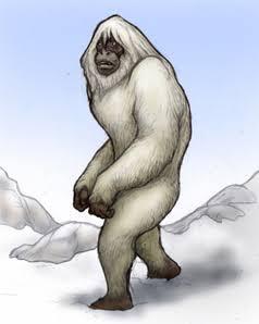 冬の防寒対策。暖房器具以外でおすすめありますか?