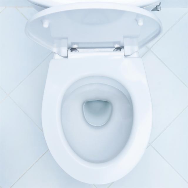 公共施設のトイレの便座から病気はうつるのか?専門家に話を聞いた - ウォッチ | 教えて!goo