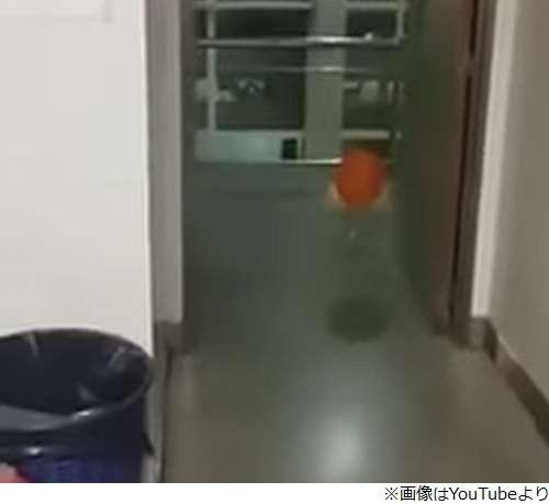 病院内を漂う風船、子供の幽霊がいる?