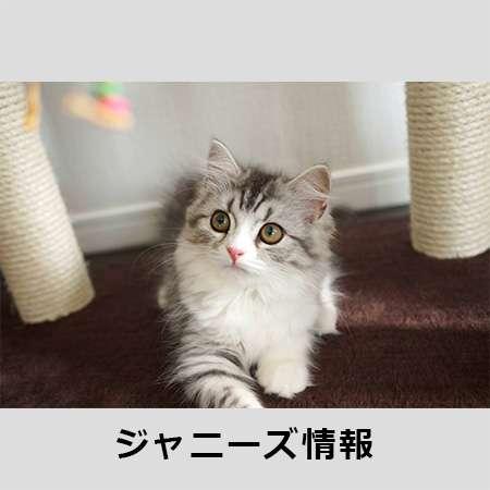 SMAP「あっけない幕切れ」が決定!?「スマスマ」最終回は収録での通常放送? | アサ芸プラス