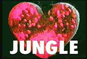 不気味なCM・jungle(ジャングル)に隠された意味 - NAVER まとめ