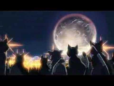 「猫の集会(監督:新海誠/制作:コミックス ウェーブ フィルム)」 - YouTube