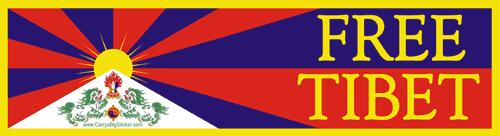 【ポーカーフェイス】チベットスナギツネの会