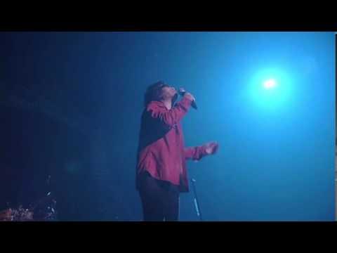 「木蘭の涙~acoustic~」スターダスト☆レビュー【LIVE】 - YouTube