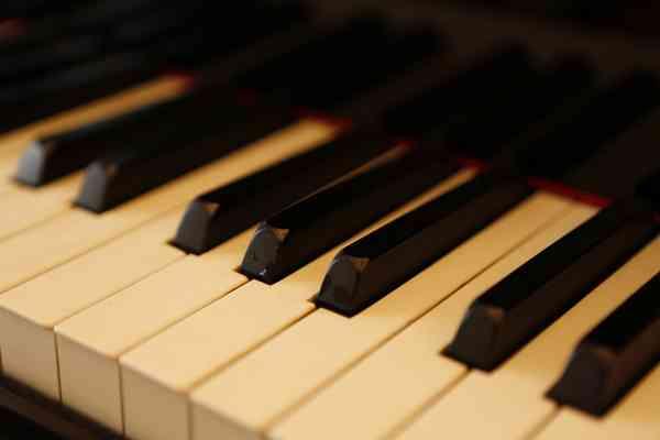 ピアノで弾いたことある曲に+を押すトピ