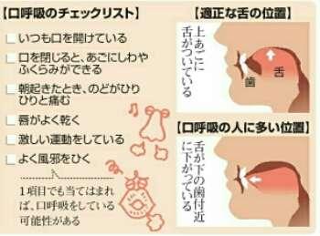 口を閉じているときの舌の位置