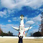 青木さやか (@sayaka___aoki) • Instagram photos and videos