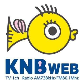 ヒアリ、殺虫剤入り餌設置は逆効果と専門家指摘|KNBニュース|北日本放送|KNB WEB
