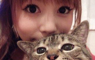 【悲報】中川翔子、猫虐待で海外からも以前から批判されていた!!!!!:ネギ速