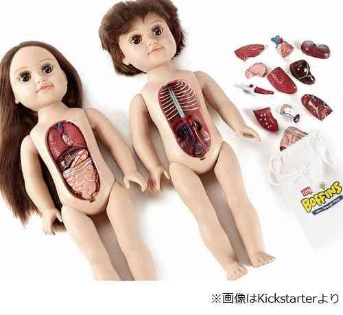 """【やや閲覧注意】人体学べる""""子どもの解剖人形""""に賛否"""