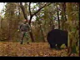 A Bear Vs Fujiwara