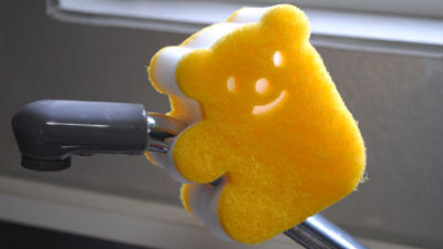 台所のスポンジ 殺菌処理をするほど強い細菌を増加させる可能性 - ライブドアニュース