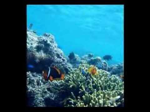 深呼吸の島・宮古島 - YouTube