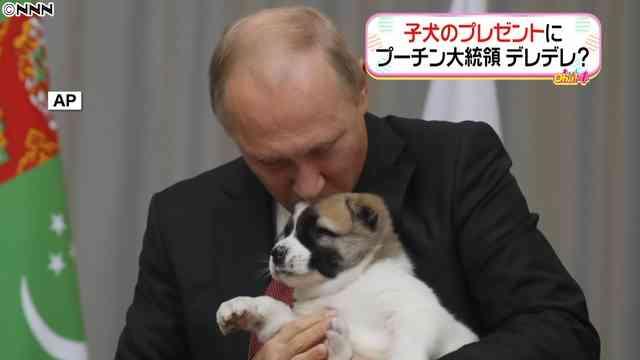 プーチン大統領65歳に、誕生日に子犬を贈られる