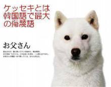 竹内涼真『白戸家』新CMで上戸彩の息子役 初期メンバー卒業なし