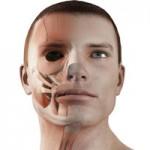 顔の加齢を食い止めよう!表情筋トレーニング5つの方法