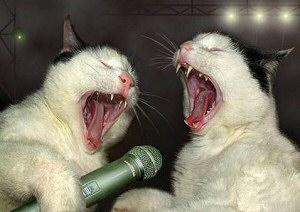 歌う!画像