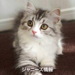 関ジャニ・錦戸亮、気に入らない付け合わせにキレる異常な「唐揚げ愛」 | ニコニコニュース