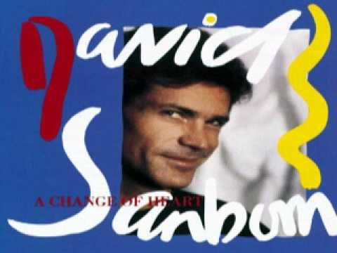 David Sanborn ~ Chicago Song (1987) - YouTube