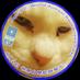 """nyanko on Twitter: """"ちなみにその #日高晤郎 さん、「#殉愛」発売時に番組で書評をしてくれました。PR以外でメディアでふれてくれる人がいなかったのに、ありがとうm(_ _)m…なのに、「北海道のたかじん」と呼ばれてw殉愛批判側の水道橋博士さんにw… """""""