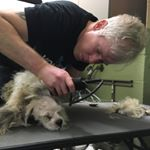 Mark Imhof (@markthedogguy) • Instagram photos and videos