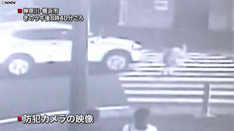 9歳女児が横断歩道ではねられ重傷…車逃走|日テレNEWS24