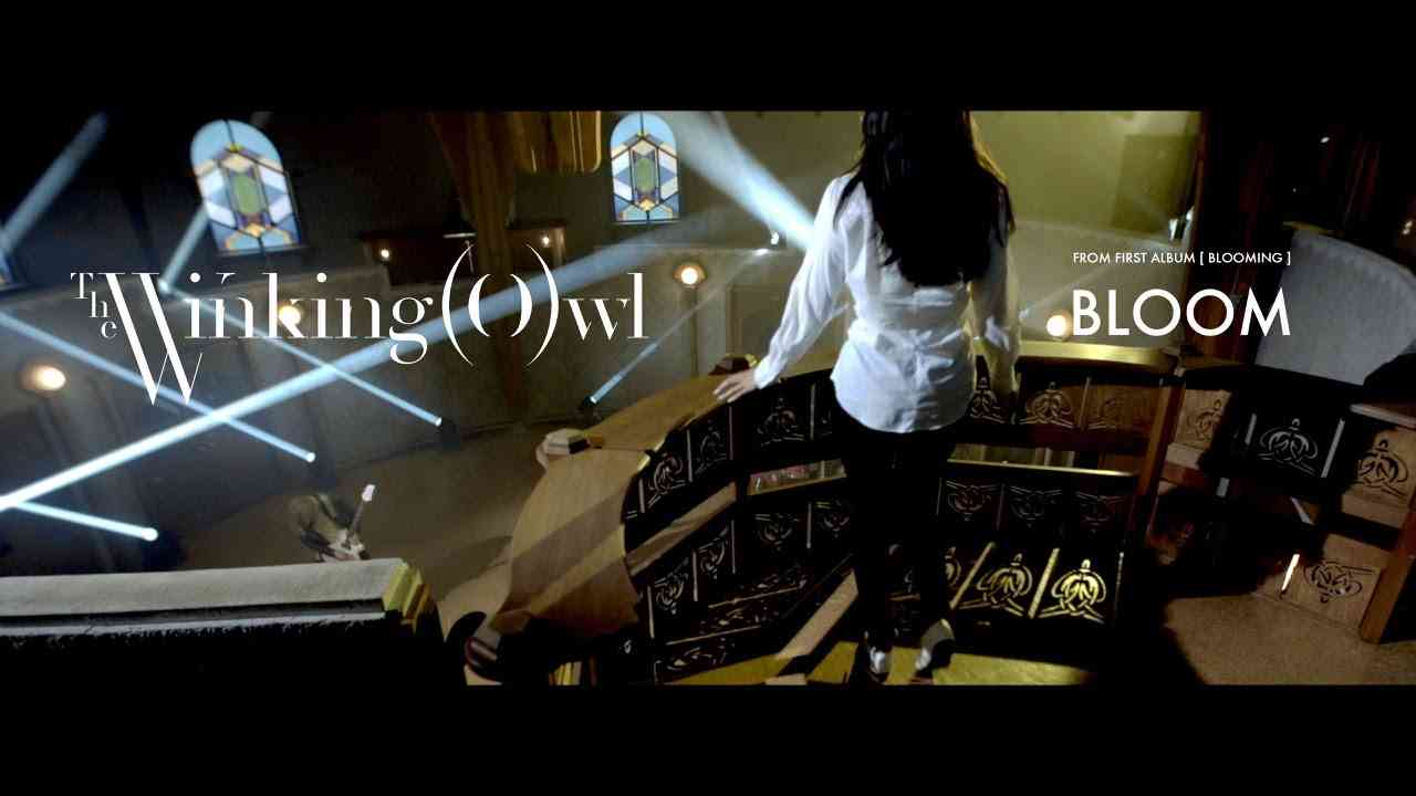 The Winking Owl - Bloom - Official Music Video - YouTube