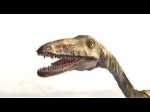 ドキュメンタリー 我らほ乳類 2億2000万年の戦い 第1回 王者・恐竜のもとで - YouTube