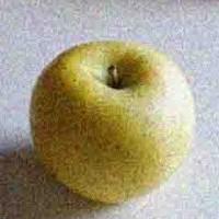 格助詞の使い分け:「が」と「の」 | 林檎翻訳雑記帳